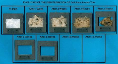 工業コンポスト中での酢酸セルロース繊維の生分解