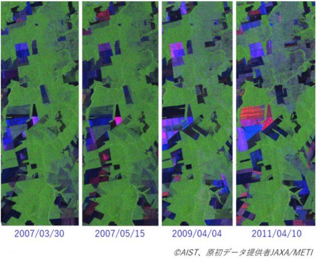 南米での森林伐採の様子を色の推移で示す