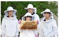 八王子キャンパスで養蜂