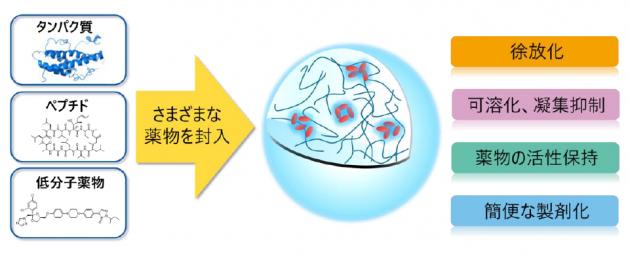「ヒアルロン酸ナノゲル」の機能