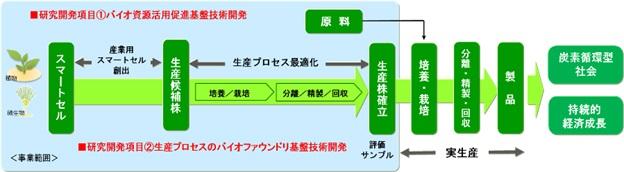 「カーボンリサイクル実現を加速するバイオ由来製品生産技術の開発」の概要
