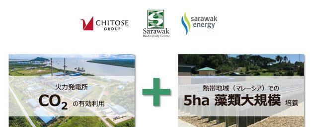 バイオジェット燃料普及に向け、火力発電所の排気ガスを利用した大規模藻類培養の実証を開始