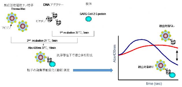 AptIa法による 抗原検出の原理
