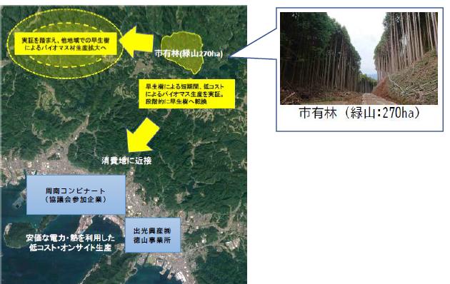 木質バイオマス生産 対象市有林の位置