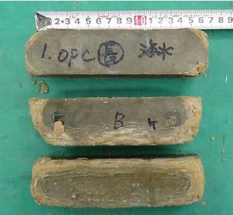 セメント系材料 深海底から回収した試験体