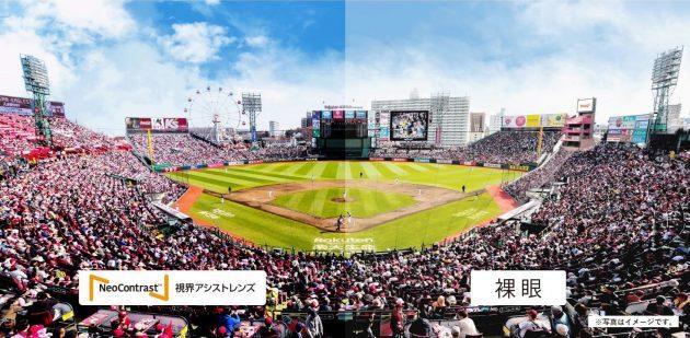『NeoContrast』を使用した視界(左)と裸眼の比較イメージ