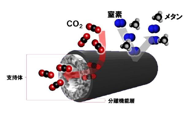 革新CO2分離膜の構造